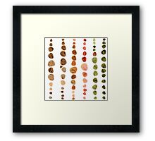Fossils in Stones Pattern Framed Print