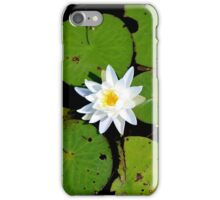 Fragrant Water Lily iPhone Case/Skin