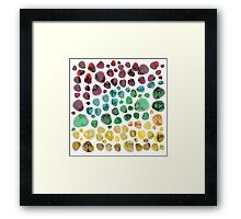 Colorful Fossil Stone Field Framed Print