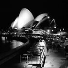 Sydney Opera House At Night by Matthew Walters