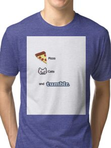Pizza, Cats, And Tumblr Tri-blend T-Shirt