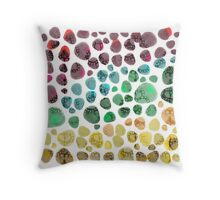Colorful Fossil Stone Field Throw Pillow