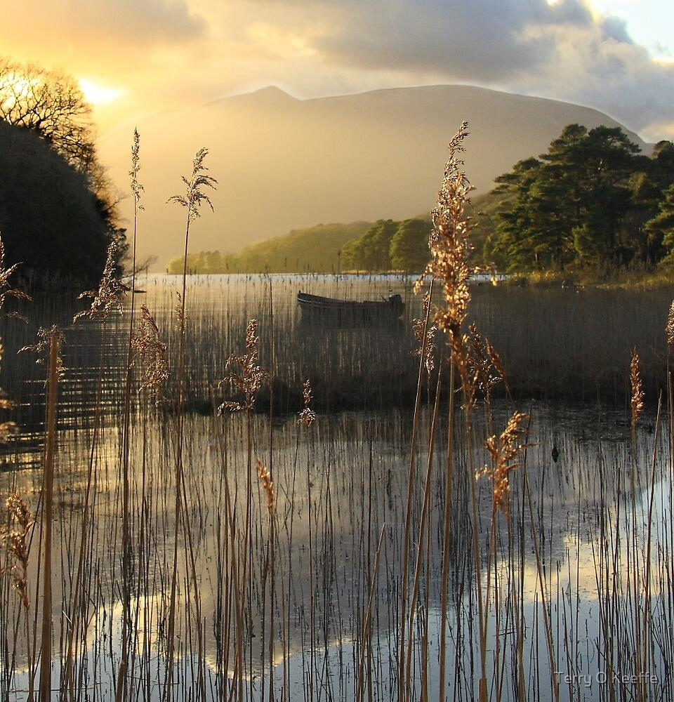 killarney,co kerry... by Terry O Keeffe