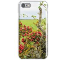 Early Christmas Decorations iPhone Case/Skin