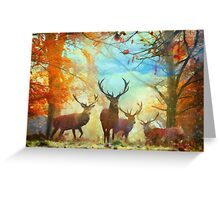 Autumn Forest Watch Greeting Card