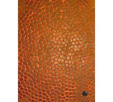 BASKETBALL (Textures) Photographic Print