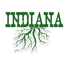 Indiana Roots by surgedesigns