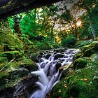 Under the Bridge @ Tollymore Forest Park, Co. Down by Kieran Donnelly