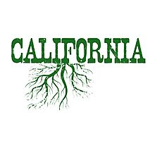 California Roots Photographic Print