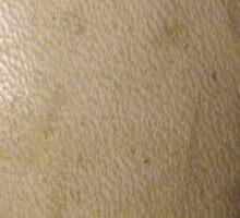 SWEET SPOT (Textures) Sticker