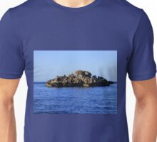 Morning on a Jagged Rock Unisex T-Shirt