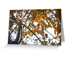 Epitome of Fall Greeting Card