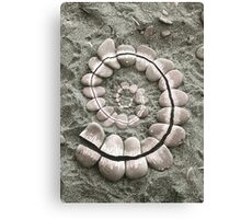 Rocky Spiral - Andy Goldsworthy Canvas Print