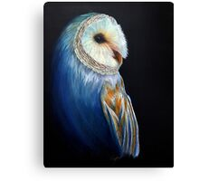 Contentment in Color - Barn Owl Canvas Print