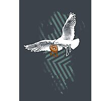 Seagulls Vs. Bagels Photographic Print