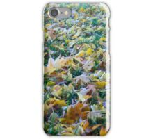 Frost of fallen leaves iPhone Case/Skin