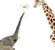 The giraffe and the elephant Sticker