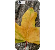 Yellow Maple Leaf  iPhone Case/Skin