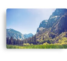 Kings Canyon Meadow Landscape Canvas Print