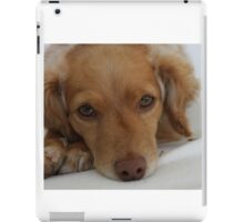 Rescue dog  iPad Case/Skin