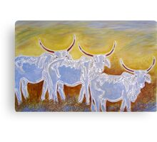 Ghost Cattle Canvas Print