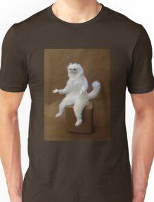 Persian Cat Meme Unisex T-Shirt