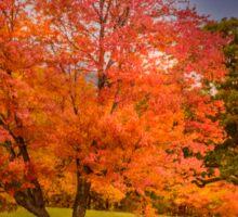 Autumn in New Hampshire Sticker