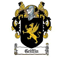Griffin  by HaroldHeraldry