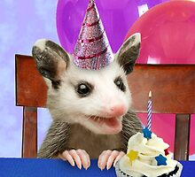 Birthday Opossum by jkartlife
