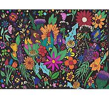 Flower Fantasia Photographic Print