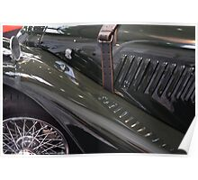Detail of classical green vintage car hood. Poster