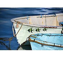 Three Little Fishes Photographic Print