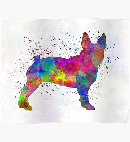 Boston Terrier 01 in watercolor Poster