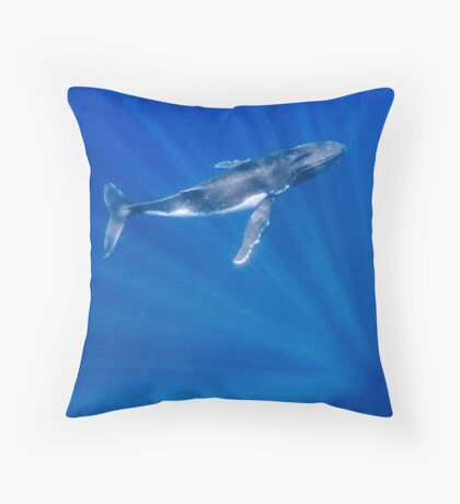 Humpback Whale Floats in Sun Rays Throw Pillow