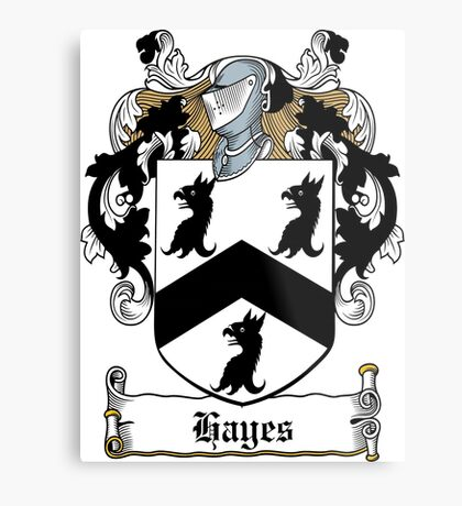 Hayes (Donegal) Metal Print