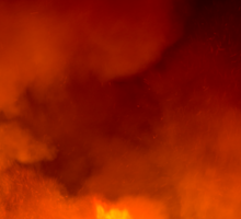 Fields of Fire Sticker