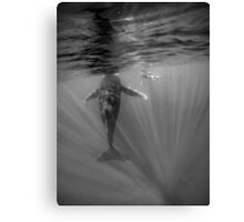 Amongst the rays Canvas Print