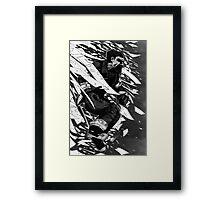 ODM - Jumping thru Window Framed Print