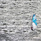 Wind Surfer. by Paul Pasco