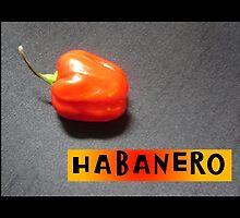 HABANERO by Colleen2012