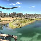 Werribee Winding (4) --  Pano at the Bend. by Larry Lingard-Davis