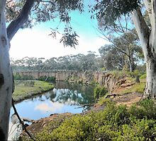 Werribee Winding (4) --  Through the Trees. by Larry Lingard-Davis