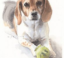 beagle and ball watercolor by Mike Theuer