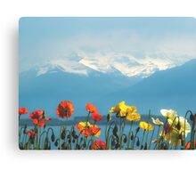 Swiss Flowers Canvas Print