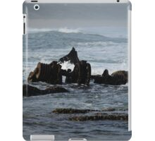 The Wreck. iPad Case/Skin