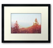 Landscape  06 Framed Print