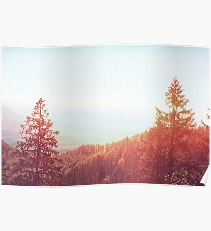Landscape  06 Poster
