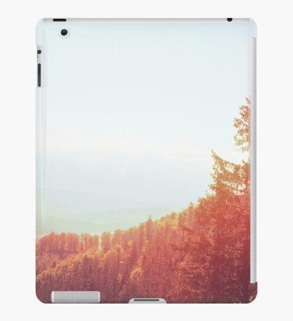 Landscape  06 iPad Case/Skin