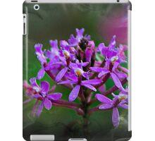Explosion Of Wonder II iPad Case/Skin