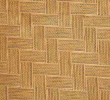 SHAKER WOVEN TAPE (Textures) by leethompson